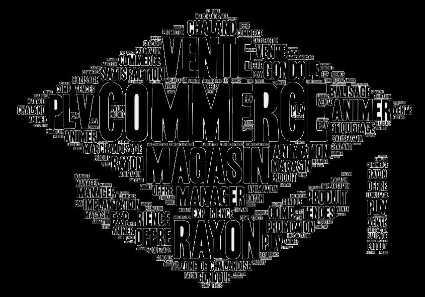 bac-pro-commerce